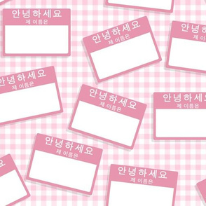 Scattered Korean 'hello my name is' nametags - pink on pink gingham