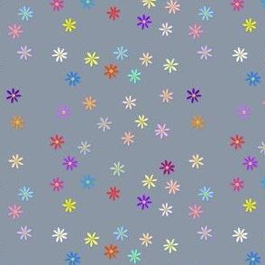 Colour Daisies