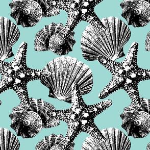 Seashells vintage black & white pastel turquoise graphic texture large scale