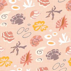 pinky seashells