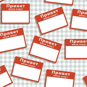 Scattered Russian 'hello my name is' nametags - red on grey gingham