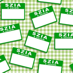 Scattered Hungarian 'hello my name is' nametags - green on gingham