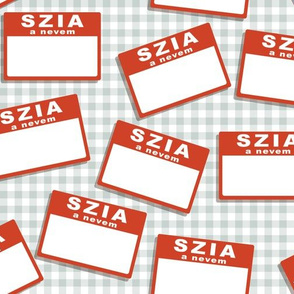 Scattered Hungarian 'hello my name is' nametags - red on grey gingham
