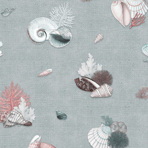 Coquillages (Pastel Blue)