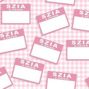 Scattered Hungarian 'hello my name is' nametags - light pink on baby pink gingham