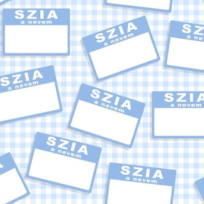 Scattered Hungarian 'hello my name is' nametags -  light blue on baby blue gingham