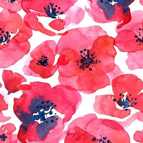Poppies - Watercolor Red Floral