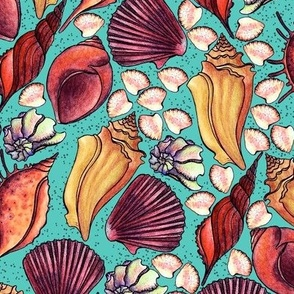 Seashells, yellow and red on a turquoise background, Large size
