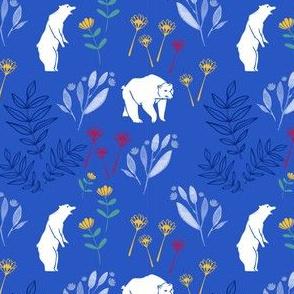 Bears_blue