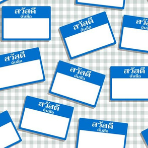 Scattered Thai 'hello my name is' nametags - blue on gingham