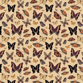 Inspirational butterflies & moths warm tones