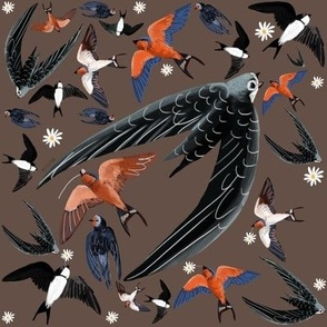 Swallows and Swift in chocolate pattern