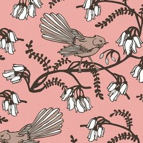 Fantail on Pink