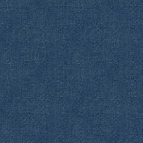 Textured Woad Blue (smooth)