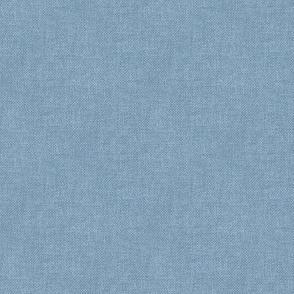 Textured Woad Blue (light)(smooth)