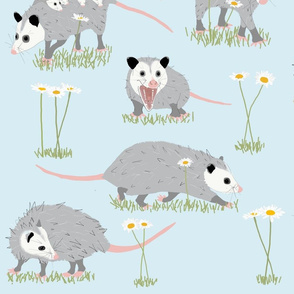 Opossums and Daisies Large Scale