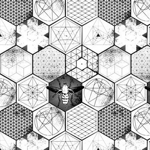 The Honeycomb Conjecture-small-black+white