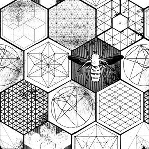 The Honeycomb Conjecture-black+white