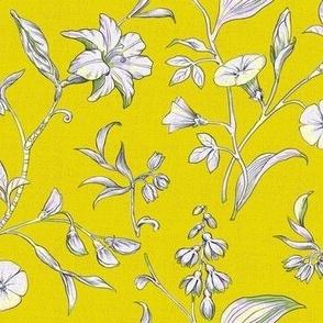 Botnical Intrigue in Tart Lemon