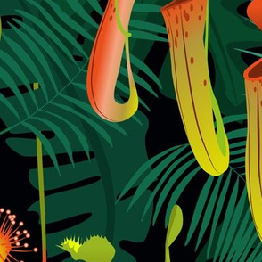 nocturnal carnivorous flora - large scale