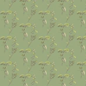 Mint and Lemon Balm Herbs