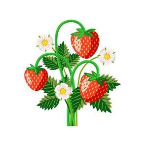 Strawberry bunch