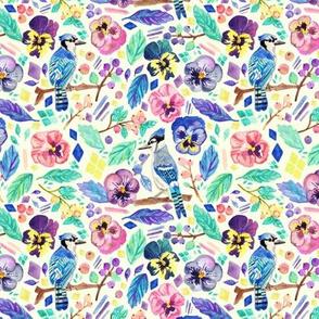 Blue Jay Winter Garden - Tiny