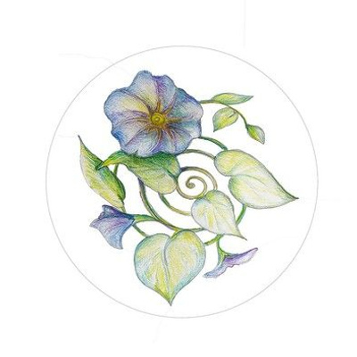 Morning Glory Embroidery Pattern