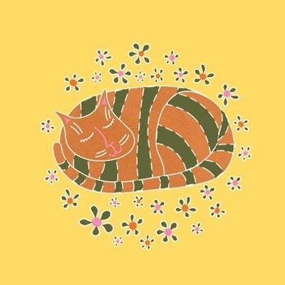 Cosy Cat