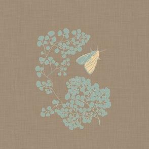 Mod moth _ Ferns