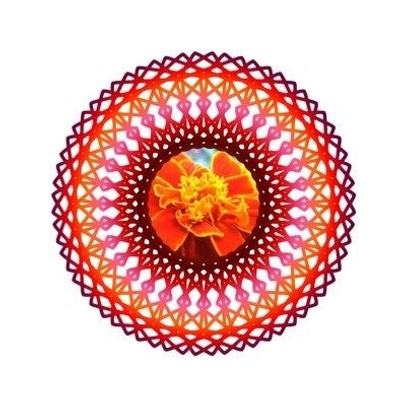 Marigold Embroidery Template