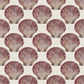 Scallop shell fabric