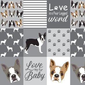 Boston_terrier_dog__blanket_quilt_