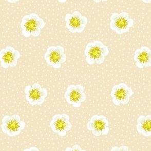Strawberry flowers - caramel