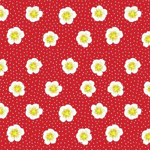 Strawberry flowers - red