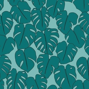 Teal monstera leaves on seaglass background