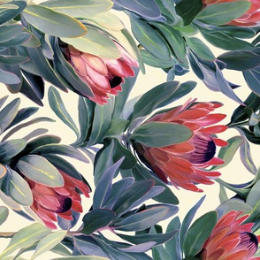 Rotated Painted Protea Floral - soft red version