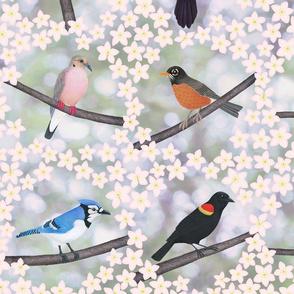 backyard birds 2 8X8 embroidery squares