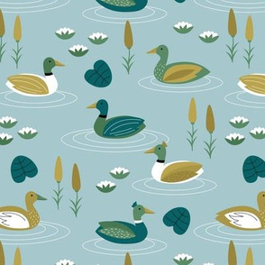 Little ducks swimming in a pond with lilies and riet spring animals minty blue green