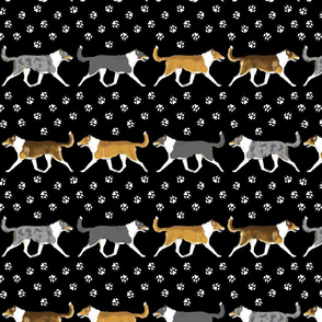 Trotting smooth coated Collies paw print border
