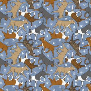 Trotting Bull Terriers colored and paw prints - faux denim