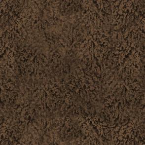 Chocolate brown poodle curl fur texture
