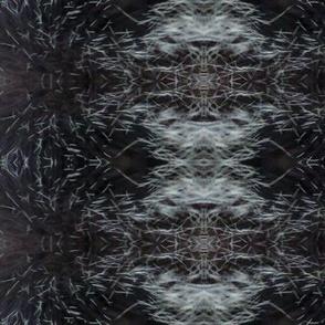 porcupinefur