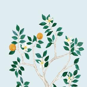Custom Citrus Grove Megan (No Bird) Orange TREE