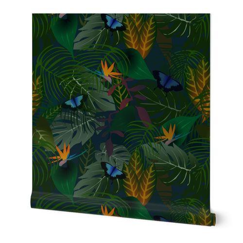Night in rainforest3