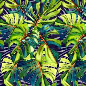 Tropical Jumbo Monstera Leaves