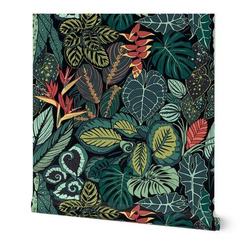 Tropical Rainforest Leaves