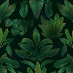 Moody Tropical Greenery