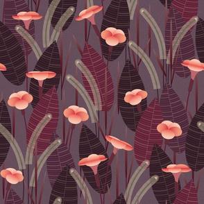 moody canna lillies