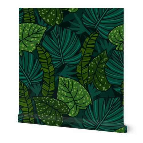 Night tropical leaves